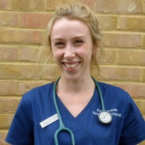 Alex Lacey, Veterinary Surgeon at Active Vetcare